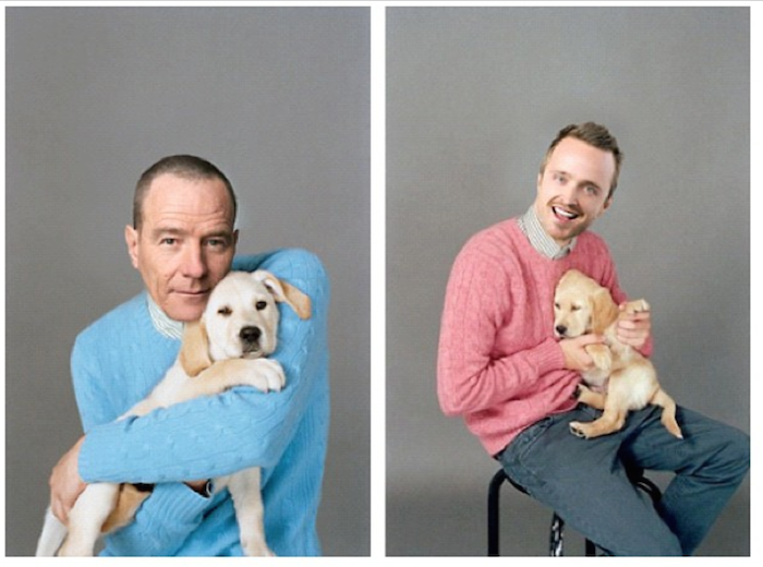 12 Lessons All Men Could Learn From Aaron Paul - Look Cute Holding A Puppy
