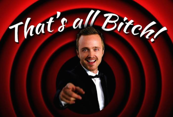 12 Lessons All Men Could Learn From Aaron Paul - Use the Term Bitch As A Dude, Successfully