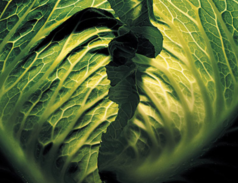 food-and-travel-2014-05-eat-your-vegetables-eat-your-vegetables-gq-magazine-may-2014-health-food-greens-04